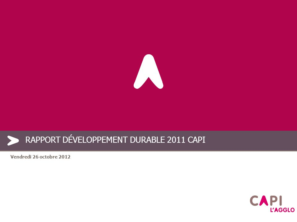 PLAN 2.Méthodologie 3. Le rapport 2011 4. Les suites données 5.