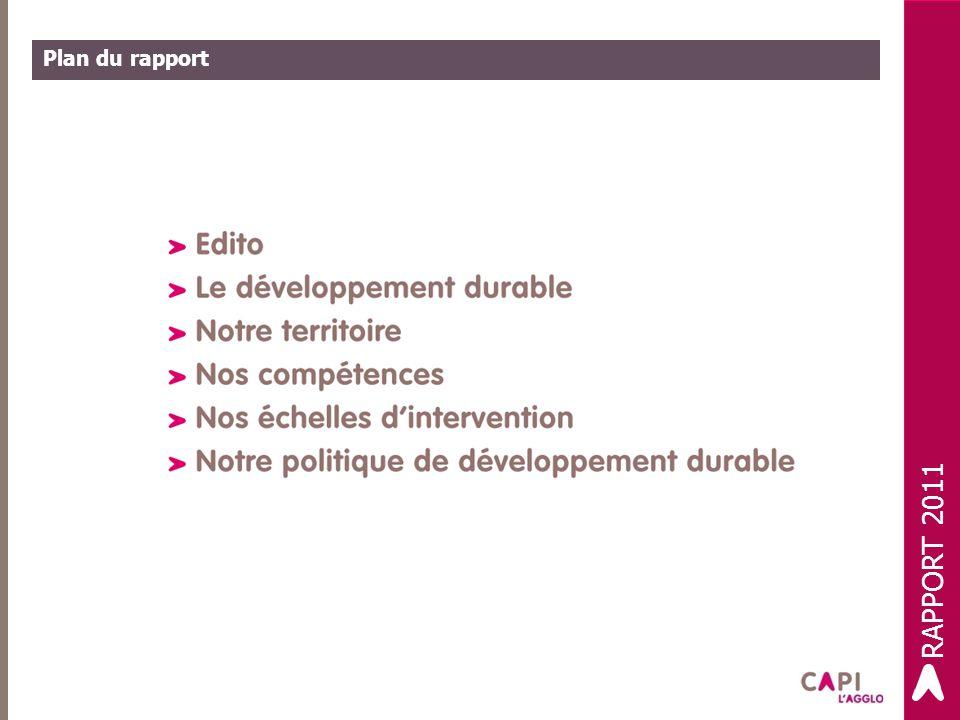 Plan du rapport RAPPORT 2011