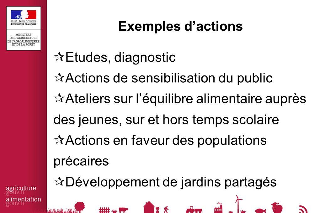 Exemples d'actions  Etudes, diagnostic  Actions de sensibilisation du public  Ateliers sur l'équilibre alimentaire auprès des jeunes, sur et hors t