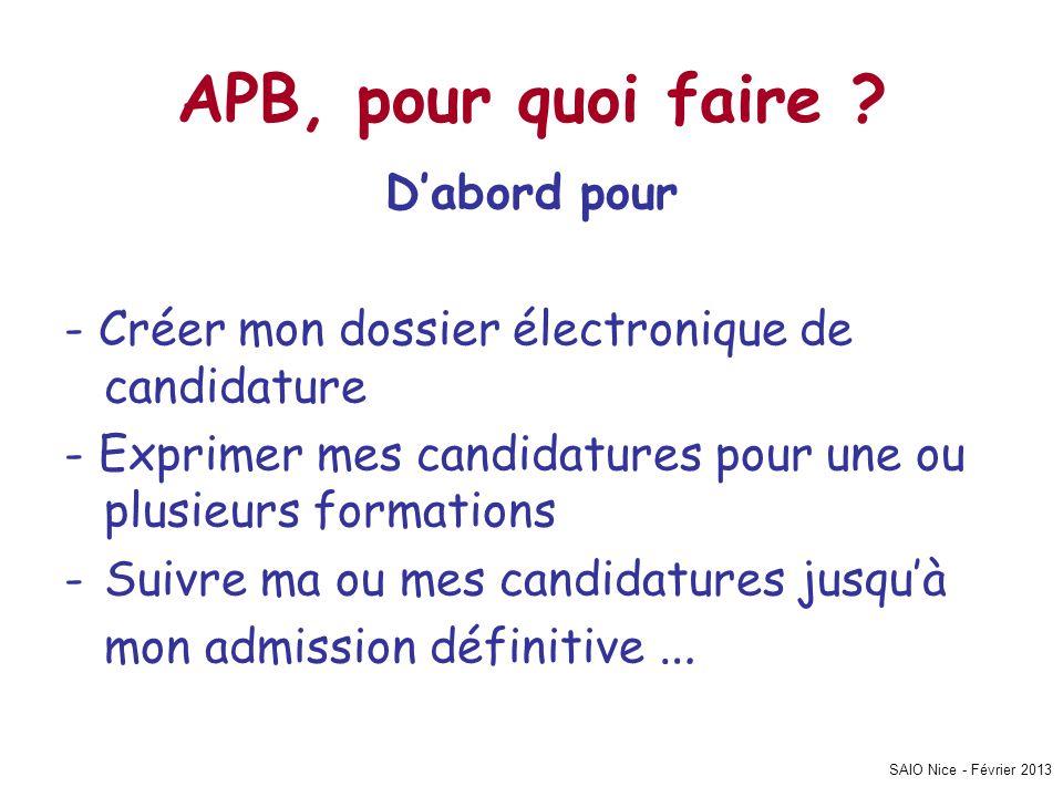 SAIO Nice - Février 2013 Les dossiers de candidature Pour certaines formations le dossier est électronique.