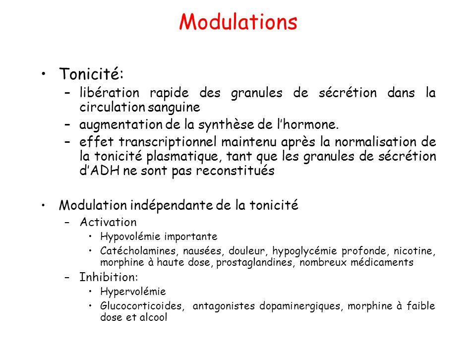 Modulations Tonicité: –libération rapide des granules de sécrétion dans la circulation sanguine –augmentation de la synthèse de l'hormone. –effet tran