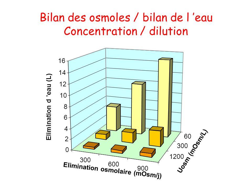 300 600 900 1200 300 60 0 2 4 6 8 10 12 14 16 Bilan des osmoles / bilan de l 'eau Concentration / dilution Elimination d 'eau (L) Elimination osmolair