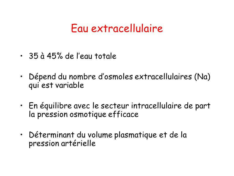 Eau intracellulaire 55 à 65% de l'eau totale Dépend du nombre d'osmoles intracellulaires (55 à 65% du nombre total d'osmoles) considéré comme fixe chez adulte sain Déterminant principal d'une grandeur régulée: le volume cellulaire