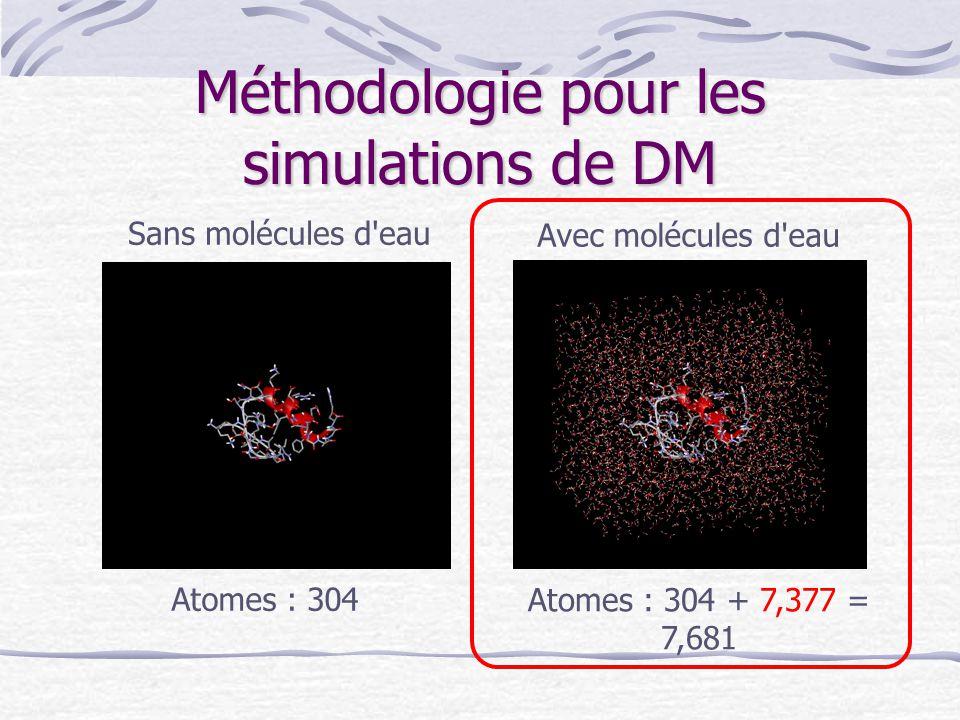 Méthodologie pour les simulations de DM Sans molécules d'eau Avec molécules d'eau Atomes : 304 Atomes : 304 + 7,377 = 7,681