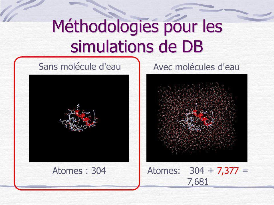 Méthodologies pour les simulations de DB Sans molécule d'eau Avec molécules d'eau Atomes : 304 Atomes: 304 + 7,377 = 7,681