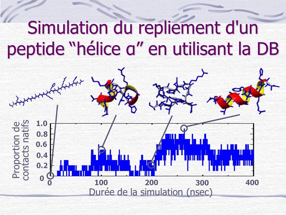 """Simulation du repliement d'un peptide """"hélice α"""" en utilisant la DB Proportion de contacts natifs Durée de la simulation (nsec) 0 300 200 100400 0 0.2"""