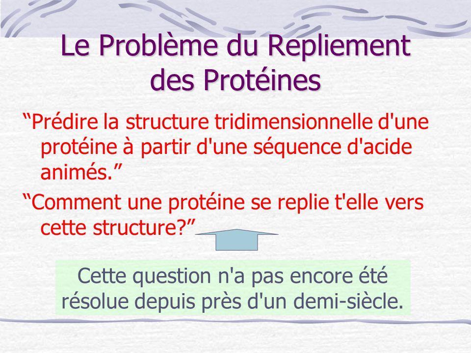 """Le Problème du Repliement des Protéines """"Prédire la structure tridimensionnelle d'une protéine à partir d'une séquence d'acide animés."""" """"Comment une p"""