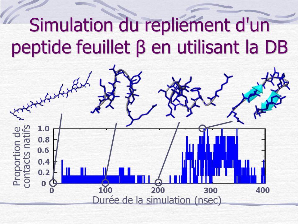 Simulation du repliement d'un peptide feuillet β en utilisant la DB Proportion de contacts natifs Durée de la simulation (nsec) 0 300 200 100400 0 0.2