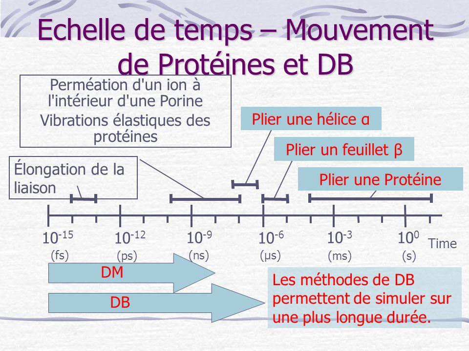 Echelle de temps – Mouvement de Protéines et DB Time 10 -15 10 -6 10 -9 10 -12 10 -3 10 0 (s) (fs) (ps) (μs)(ns) (ms) Les méthodes de DB permettent de