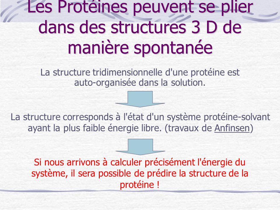 Les Protéines peuvent se plier dans des structures 3 D de manière spontanée La structure tridimensionnelle d'une protéine est auto-organisée dans la s