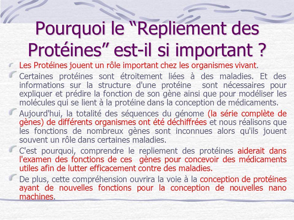 """Pourquoi le """"Repliement des Protéines"""" est-il si important ? Les Protéines jouent un rôle important chez les organismes vivant. Certaines protéines so"""