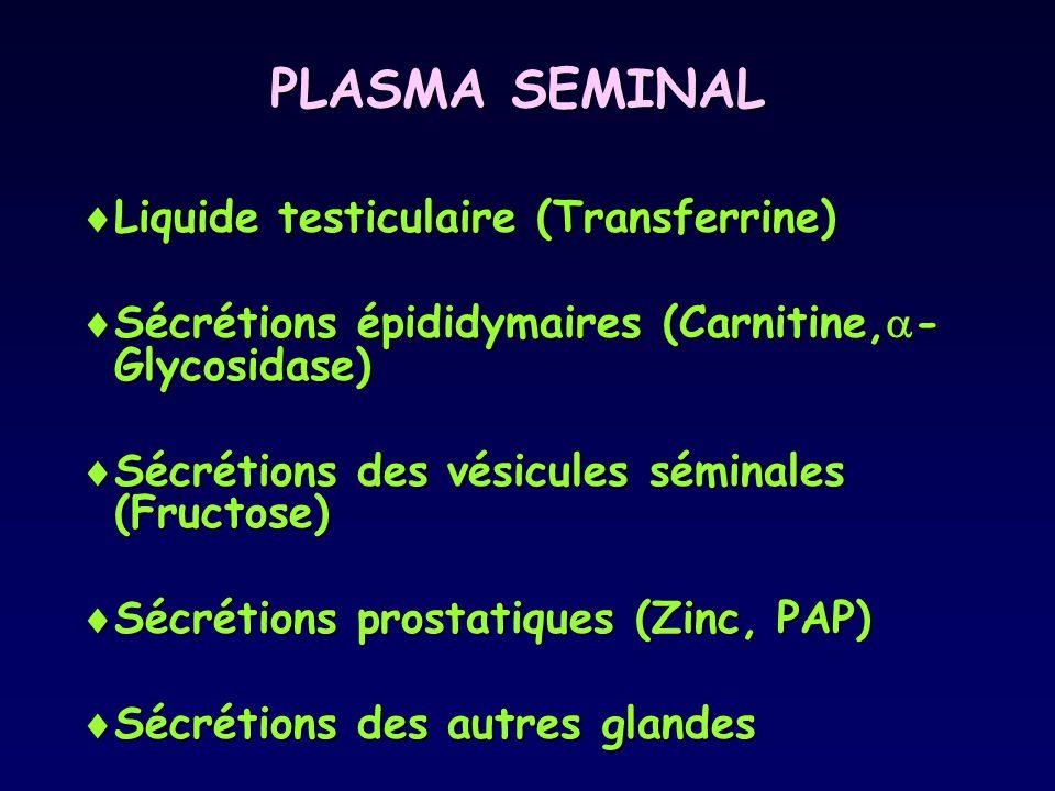 PLASMA SEMINAL  Liquide testiculaire (Transferrine)  Sécrétions épididymaires (Carnitine,  - Glycosidase)  Sécrétions des vésicules séminales (Fru