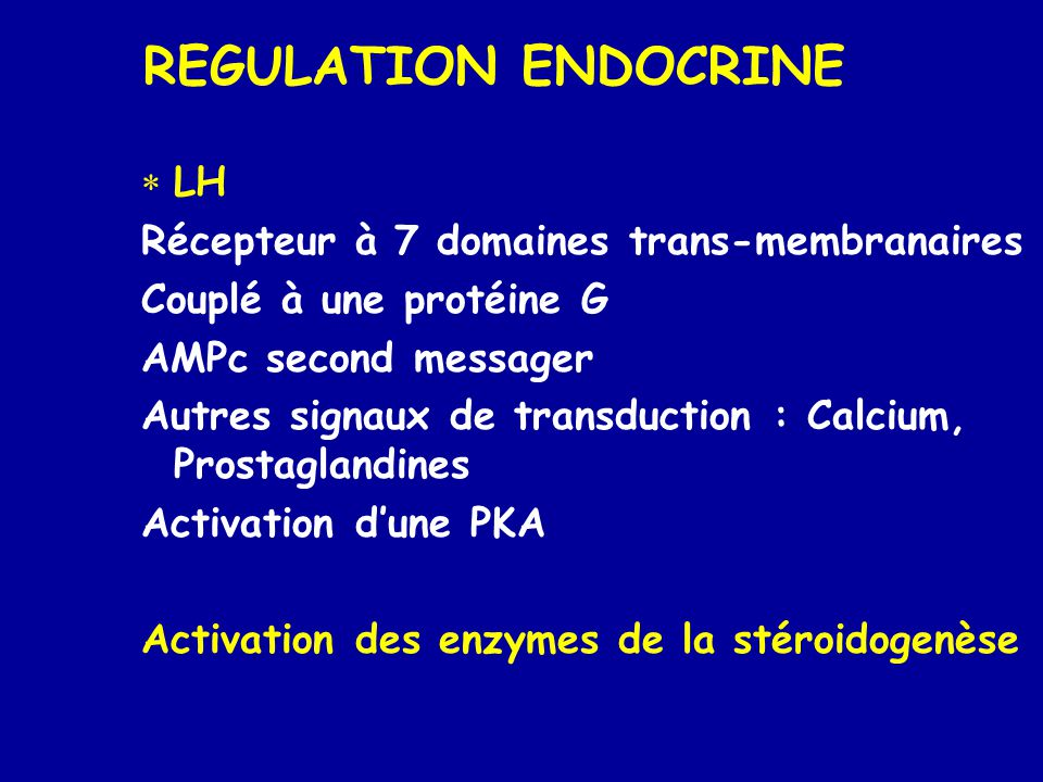 REGULATION ENDOCRINE  LH Récepteur à 7 domaines trans-membranaires Couplé à une protéine G AMPc second messager Autres signaux de transduction : Calcium, Prostaglandines Activation d'une PKA Activation des enzymes de la stéroidogenèse