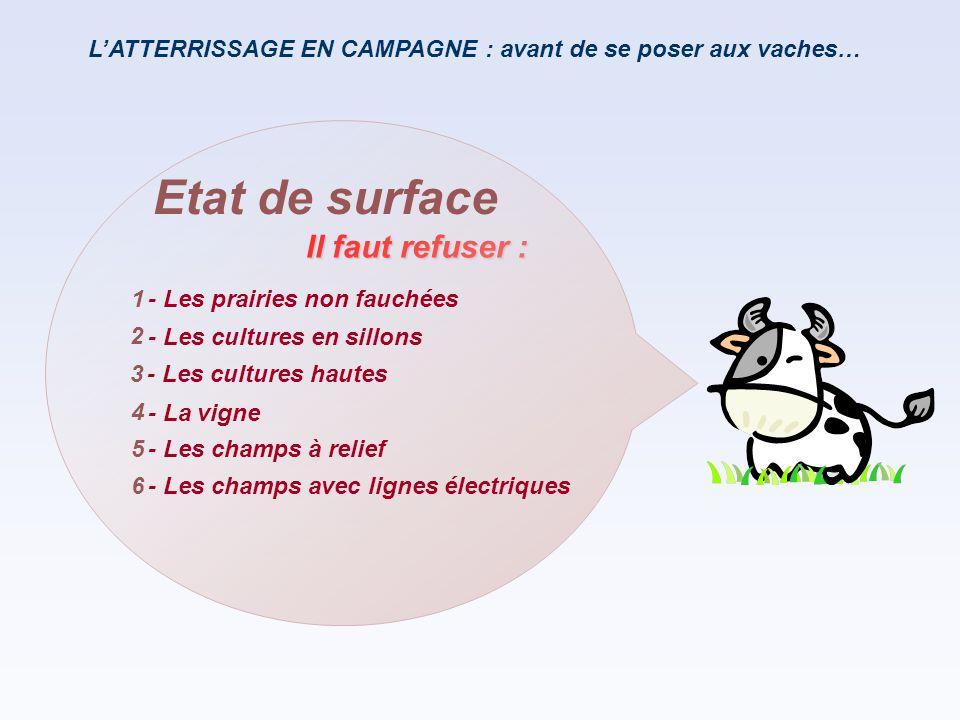 L'ATTERRISSAGE EN CAMPAGNE : avant de se poser aux vaches… Il faut refuser : Etat de surface - Les prairies non fauchées - Les cultures en sillons - L
