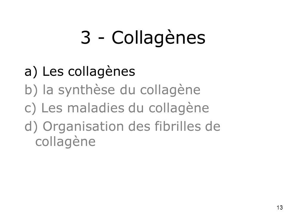 13 3 - Collagènes a) Les collagènes b) la synthèse du collagène c) Les maladies du collagène d) Organisation des fibrilles de collagène