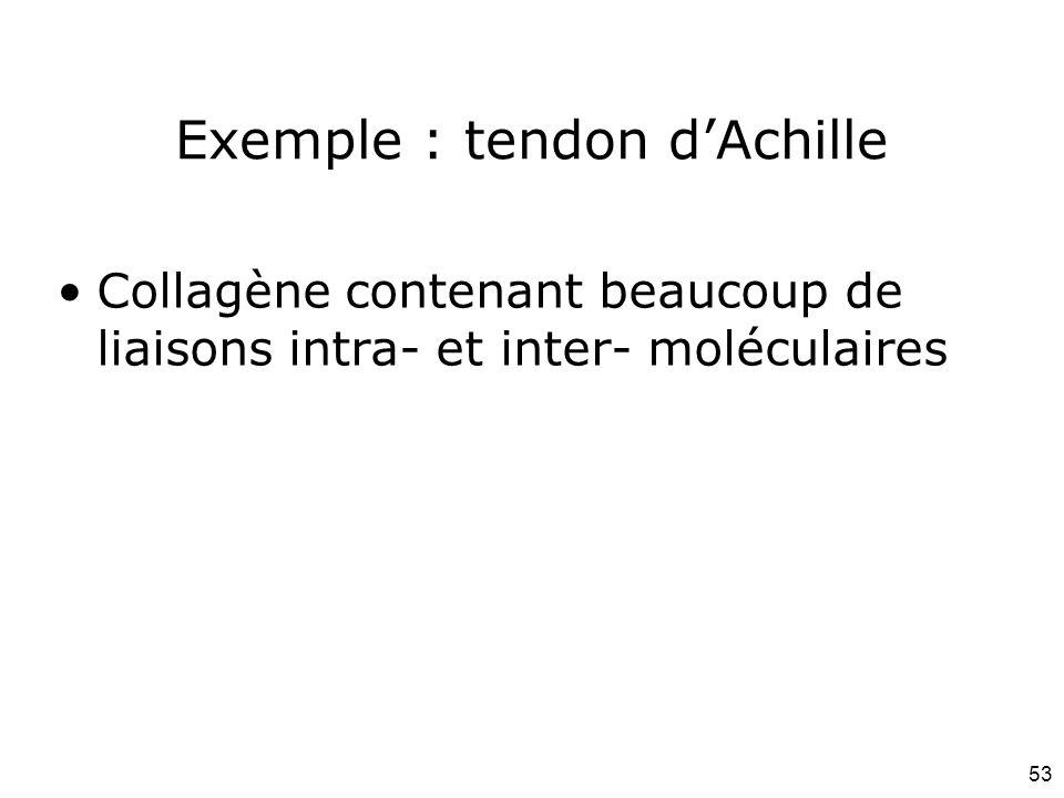 53 Exemple : tendon d'Achille Collagène contenant beaucoup de liaisons intra- et inter- moléculaires