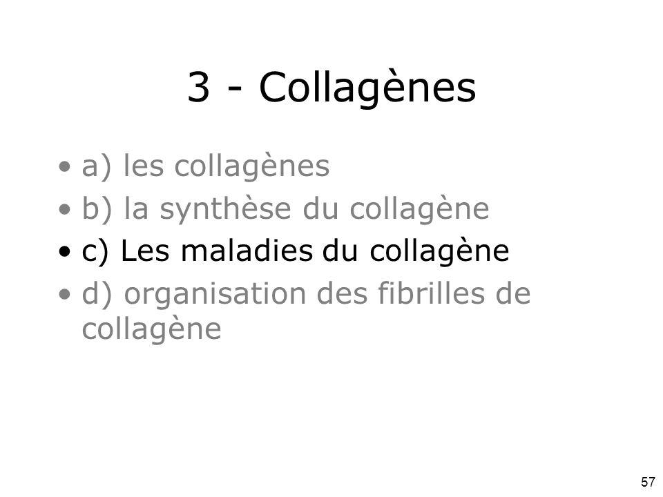 57 3 - Collagènes a) les collagènes b) la synthèse du collagène c) Les maladies du collagène d) organisation des fibrilles de collagène