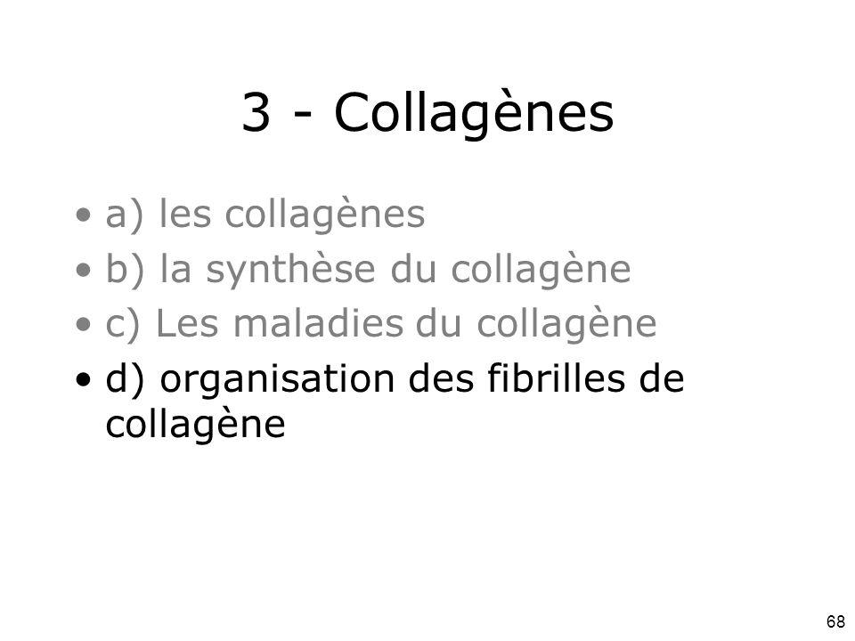 68 3 - Collagènes a) les collagènes b) la synthèse du collagène c) Les maladies du collagène d) organisation des fibrilles de collagène