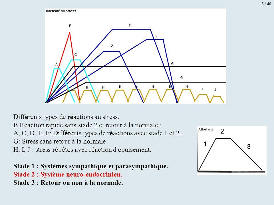 Diff é rents types de r é actions au stress. B Réaction rapide sans stade 2 et retour à la normale.: A, C, D, E, F: Diff é rents types de r é actions