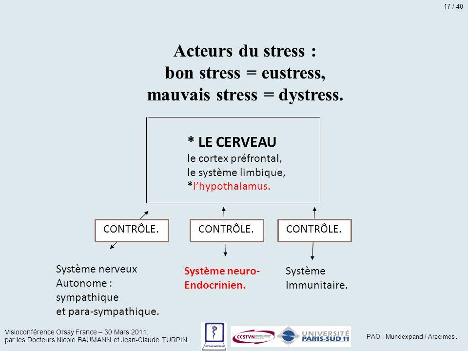 Acteurs du stress : bon stress = eustress, mauvais stress = dystress. * LE CERVEAU le cortex préfrontal, le système limbique, *l'hypothalamus. Système