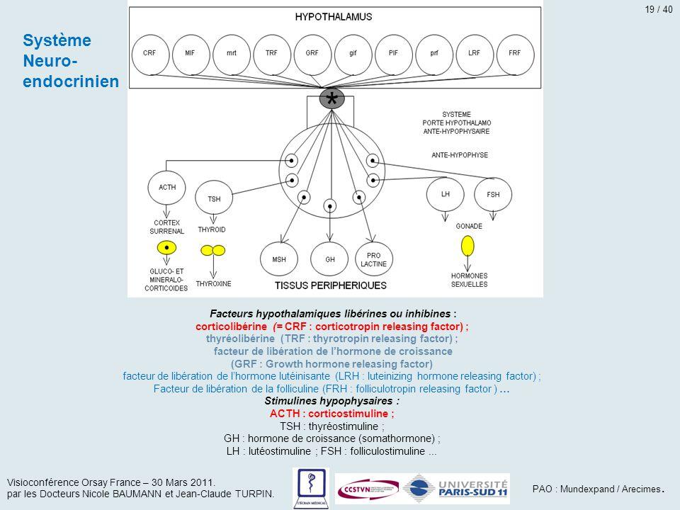Système Neuro- endocrinien Visioconférence Orsay France – 30 Mars 2011. par les Docteurs Nicole BAUMANN et Jean-Claude TURPIN. PAO : Mundexpand / Arec