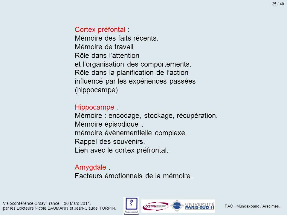 Cortex préfontal : Mémoire des faits récents. Mémoire de travail. Rôle dans l'attention et l'organisation des comportements. Rôle dans la planificatio