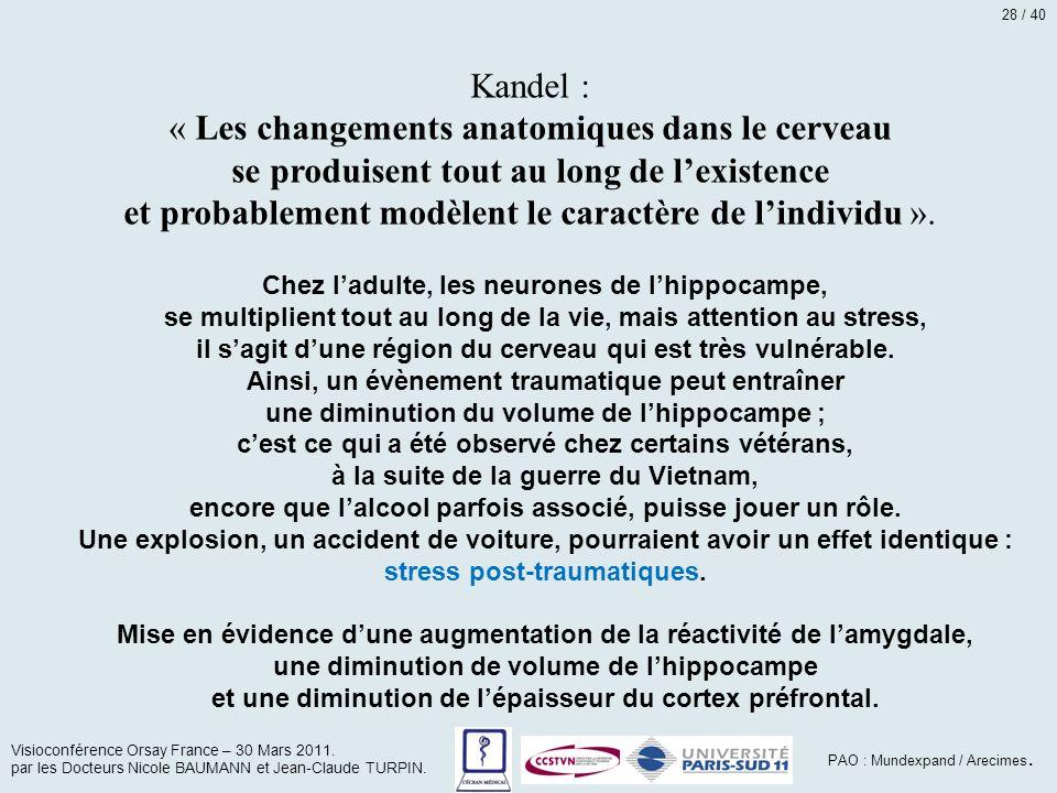 Kandel : « Les changements anatomiques dans le cerveau se produisent tout au long de l'existence et probablement modèlent le caractère de l'individu »