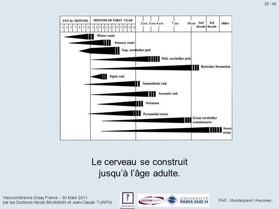 Le cerveau se construit jusqu'à l'âge adulte. Visioconférence Orsay France – 30 Mars 2011. par les Docteurs Nicole BAUMANN et Jean-Claude TURPIN. PAO