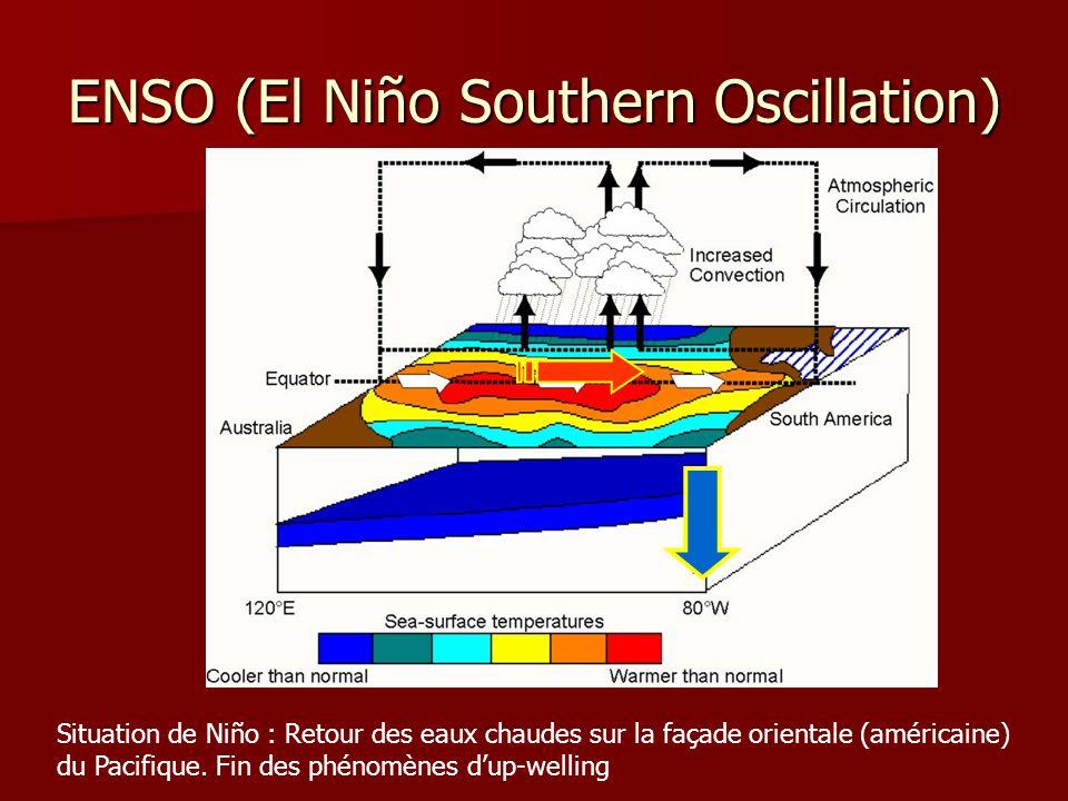 ENSO (El Niño Southern Oscillation) Situation de Niño : Retour des eaux chaudes sur la façade orientale (américaine) du Pacifique. Fin des phénomènes