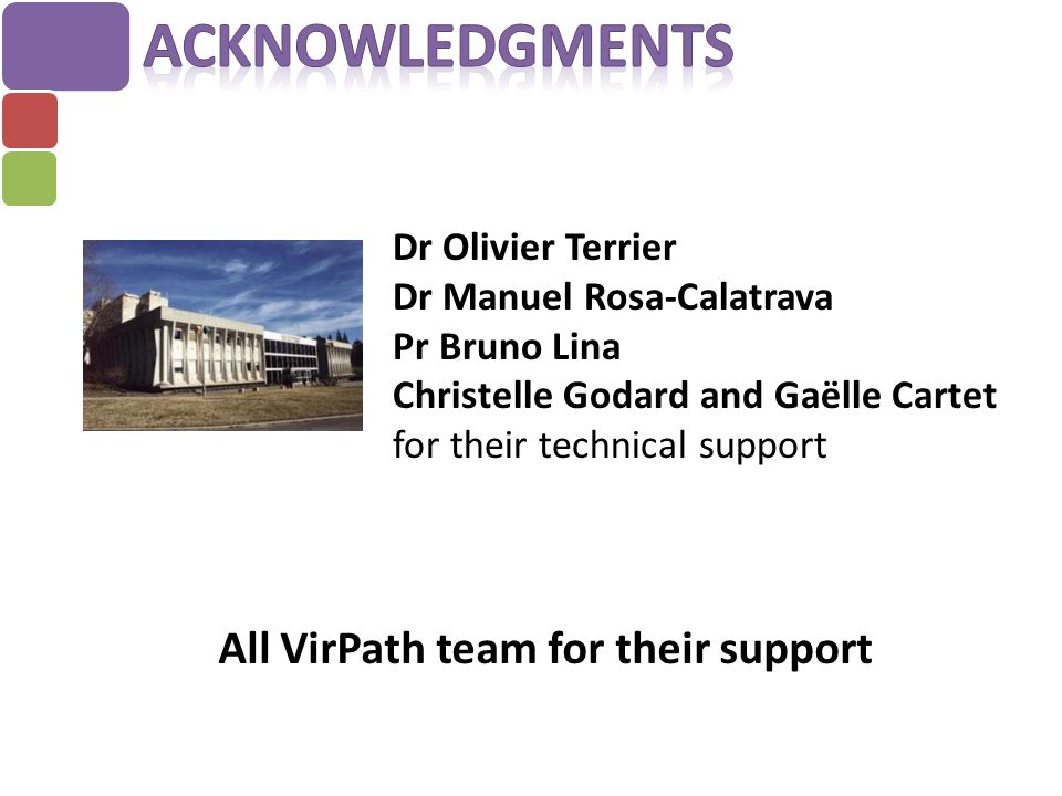 Dr Olivier Terrier Dr Manuel Rosa-Calatrava Pr Bruno Lina Christelle Godard and Gaëlle Cartet for their technical support All VirPath team for their s