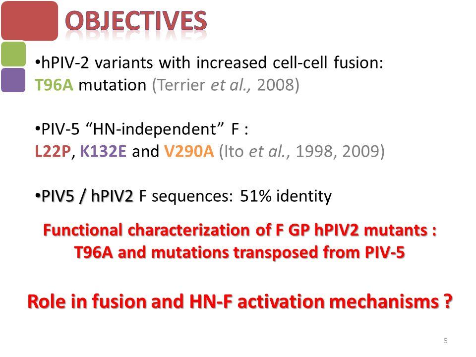  T96A: favorise l'activation par HN  I24P: F indépendante de HN  K133E: interaction entre F et HN et augmentation de la fusion  I294A: favorise l'activation par HN 6 Tête Tige I24P I294A T96A K133E  2 parties distinctes de la tête de F semblent être impliquées dans l'interaction F-HN