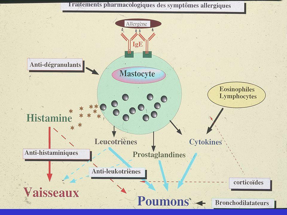 I.Prévention éviction des allergènes : suppression de l'aliment élimination de l'animal domestique lutte contre les allergènes : réduction des acarien