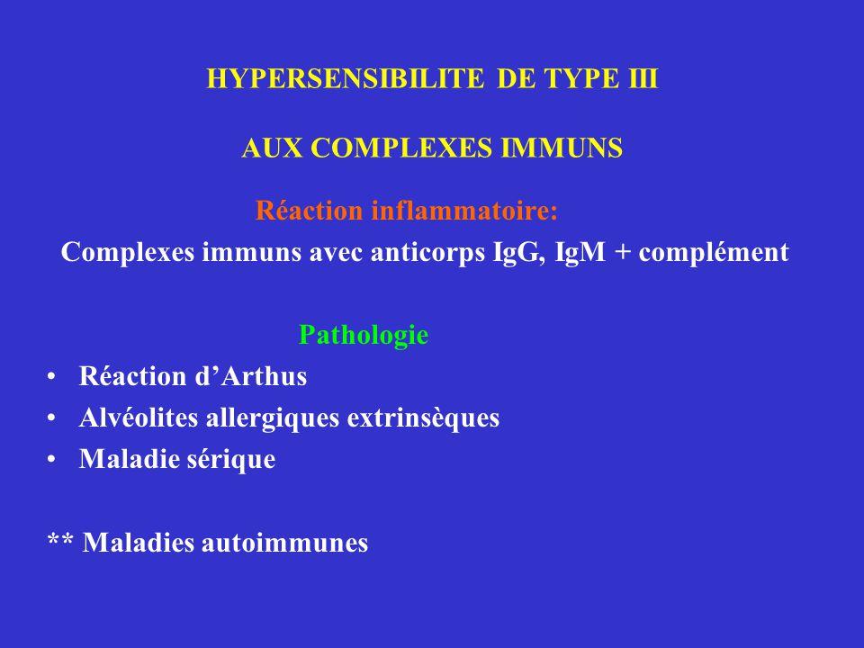 HYPERSENSIBILITE DE TYPE III AUX COMPLEXES IMMUNS Réaction inflammatoire: Complexes immuns avec anticorps IgG, IgM + complément Pathologie Réaction d'Arthus Alvéolites allergiques extrinsèques Maladie sérique ** Maladies autoimmunes
