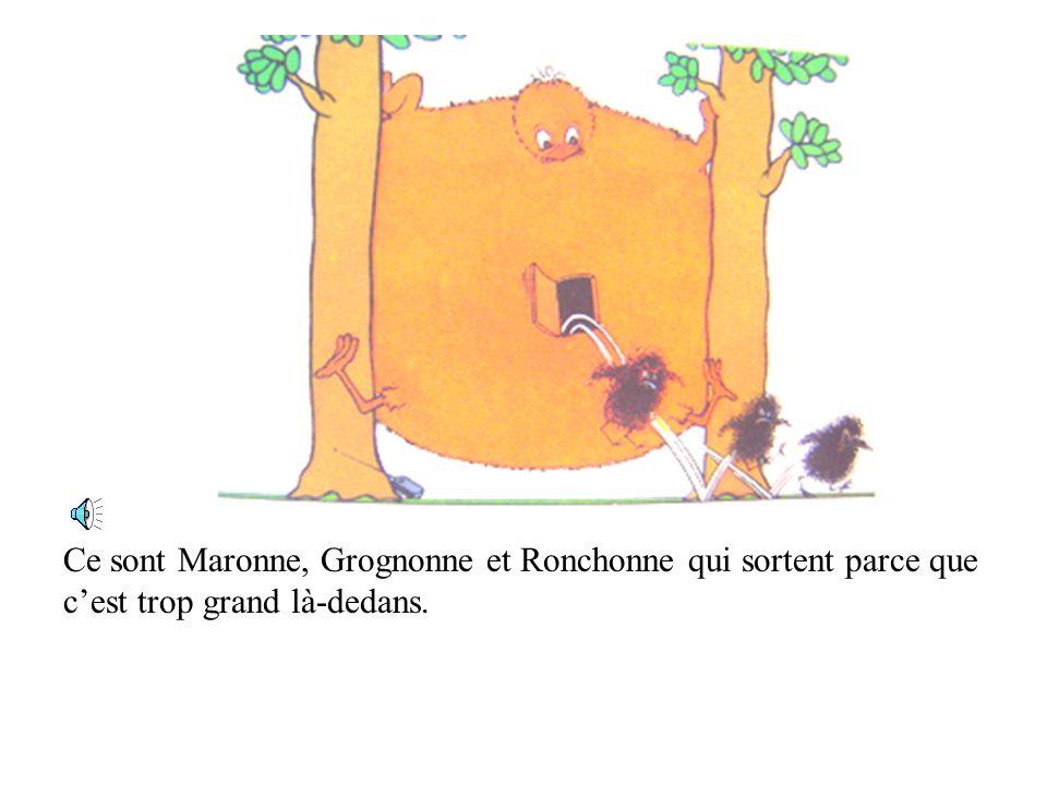 Ce sont Maronne, Grognonne et Ronchonne qui sortent parce que c'est trop grand là-dedans.