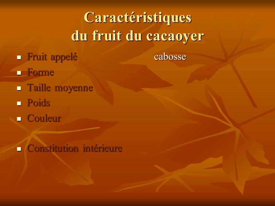 Caractéristiques du fruit du cacaoyer Fruit appelécabosse Fruit appelécabosse Forme Forme Taille moyenne Taille moyenne Poids Poids Couleur Couleur Co