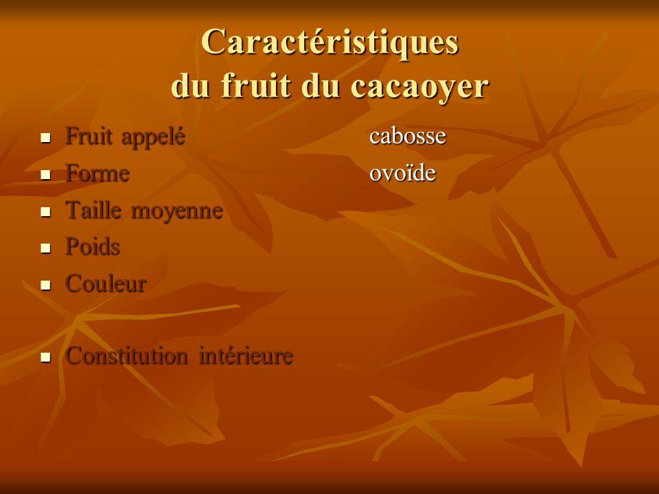 Caractéristiques du fruit du cacaoyer Fruit appelécabosse Fruit appelécabosse Formeovoïde Formeovoïde Taille moyenne Taille moyenne Poids Poids Couleu