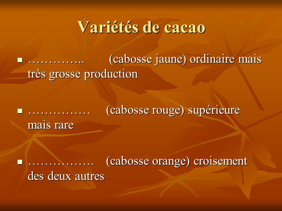 Variétés de cacao ………….. (cabosse jaune) ordinaire mais très grosse production ………….. (cabosse jaune) ordinaire mais très grosse production …………… (cab