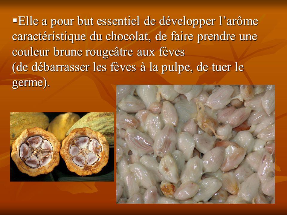  Elle a pour but essentiel de développer l'arôme caractéristique du chocolat, de faire prendre une couleur brune rougeâtre aux fèves (de débarrasser