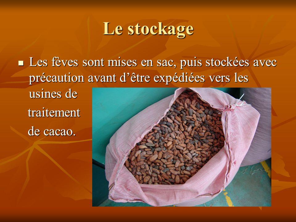 Les fèves sont mises en sac, puis stockées avec précaution avant d'être expédiées vers les usines de Les fèves sont mises en sac, puis stockées avec p