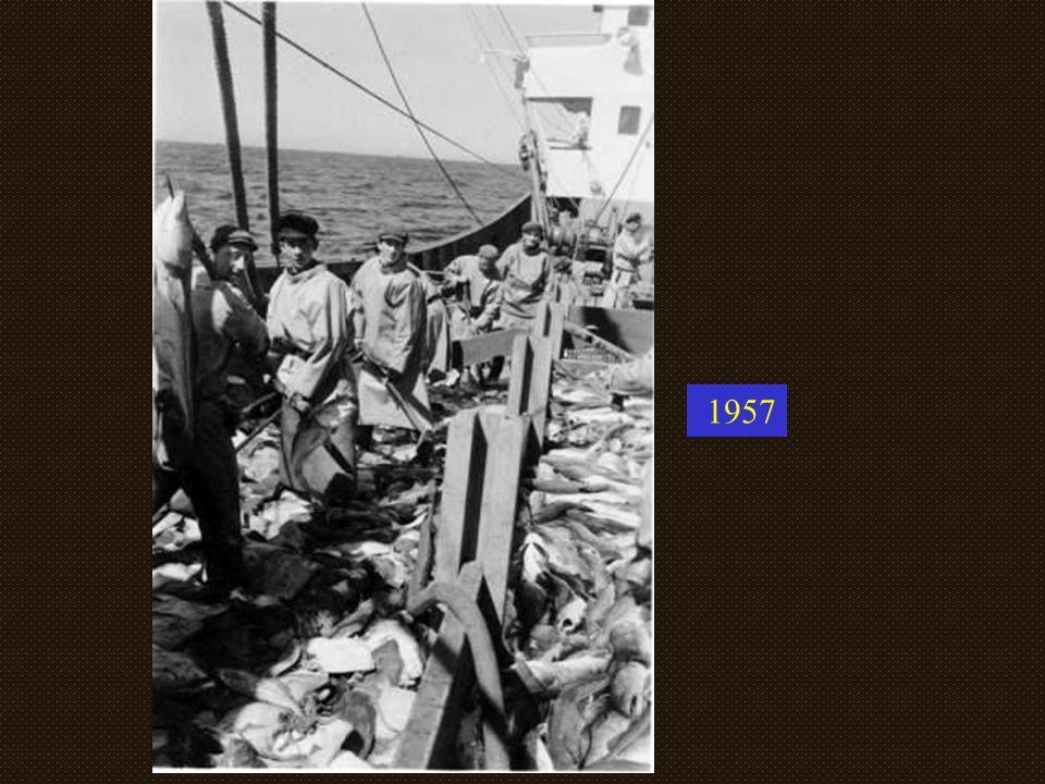 POSEIDON DG2023.....Sister Ship APHRODITE...Chantier SICCNA de St Malo Photo Jack Daussy et Robert Fournier