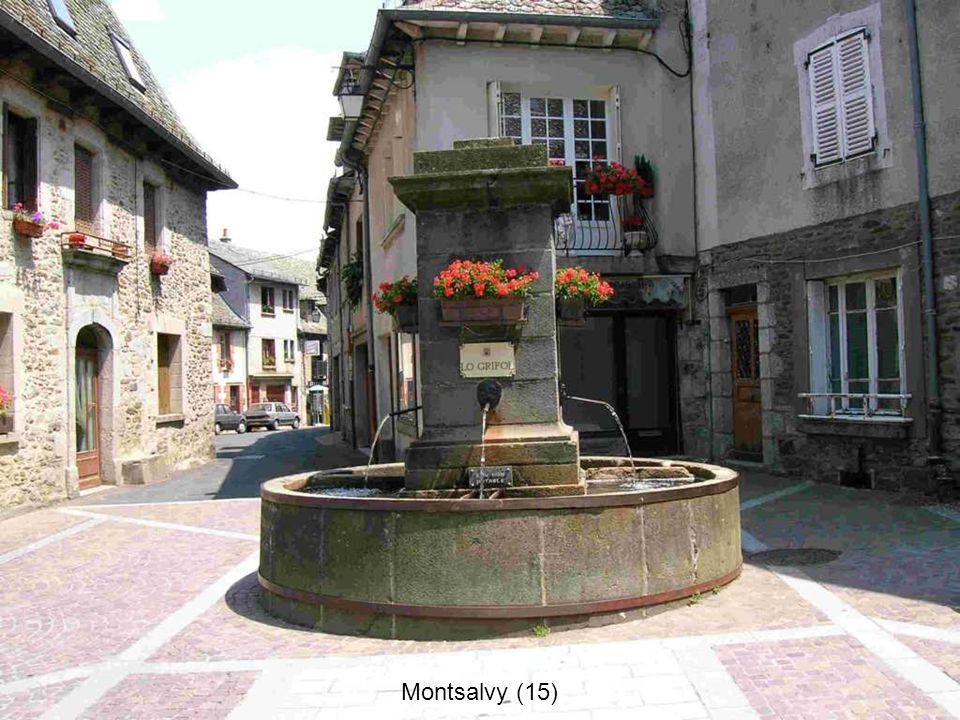 Saint-Flour (15)