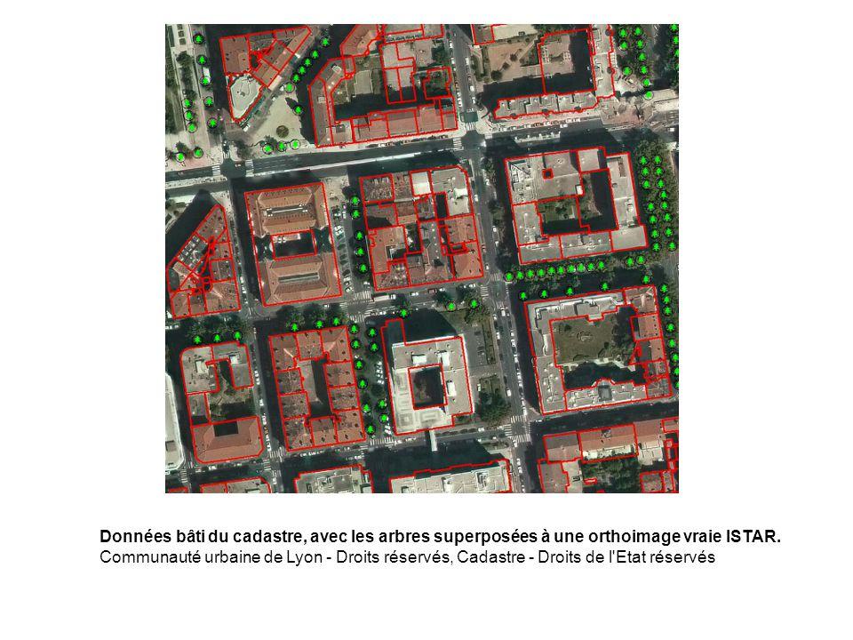 Données bâti du cadastre, avec les arbres superposées à une orthoimage vraie ISTAR. Communauté urbaine de Lyon - Droits réservés, Cadastre - Droits de