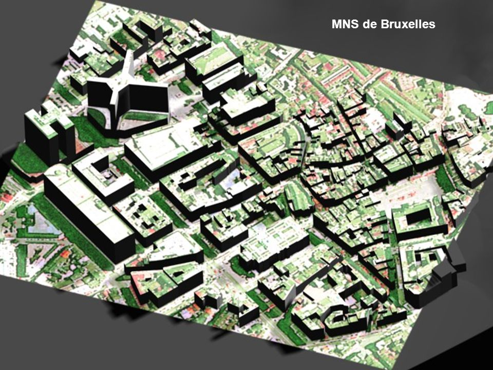 MNS de Bruxelles