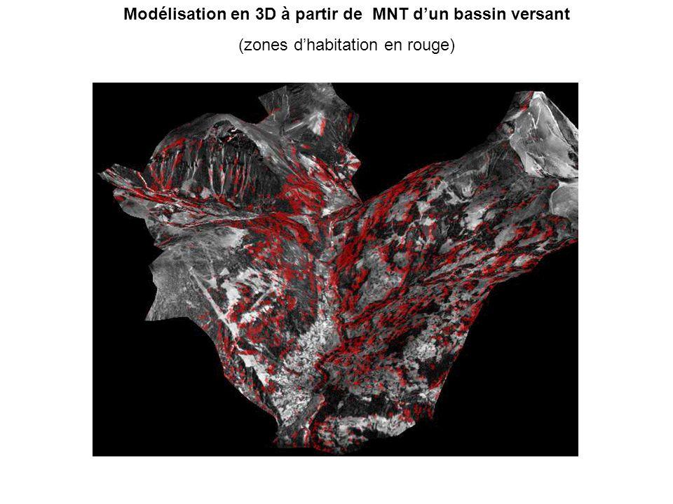 Modélisation en 3D à partir de MNT d'un bassin versant (zones d'habitation en rouge)