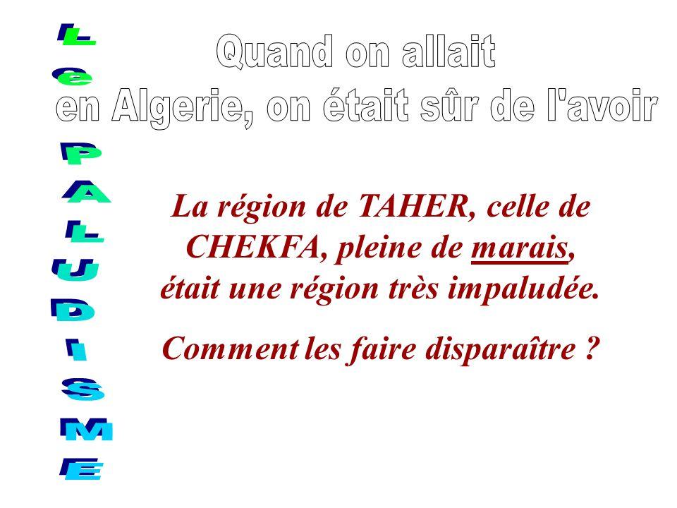 La région de TAHER, celle de CHEKFA, pleine de marais, était une région très impaludée. Comment les faire disparaître ?