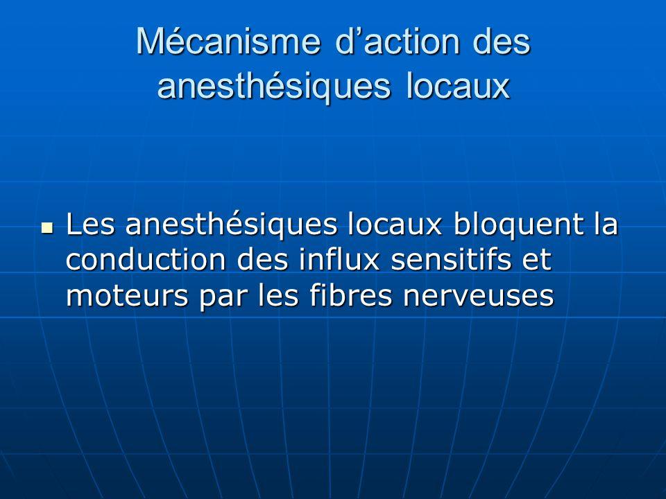 Mécanisme d'action des anesthésiques locaux Les anesthésiques locaux bloquent la conduction des influx sensitifs et moteurs par les fibres nerveuses L
