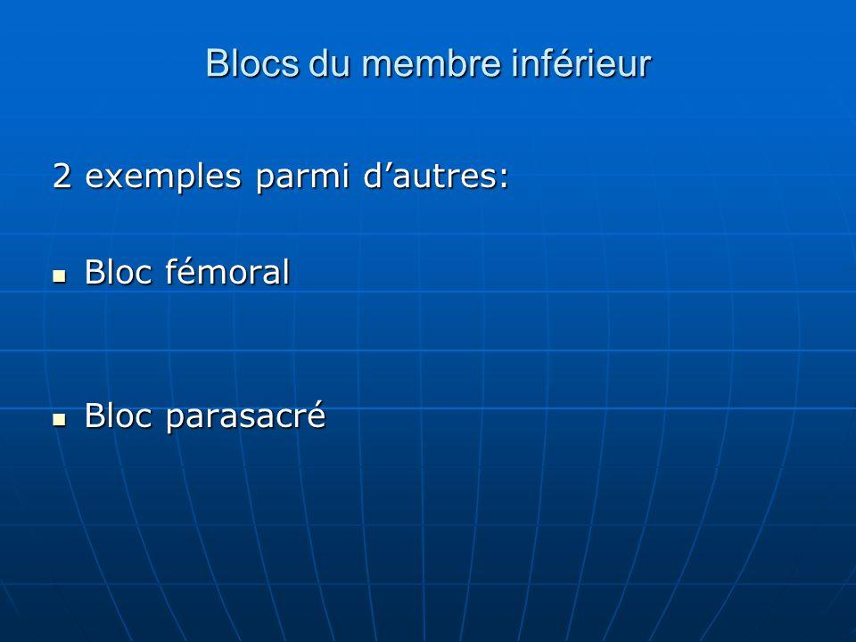 Blocs du membre inférieur 2 exemples parmi d'autres: Bloc fémoral Bloc fémoral Bloc parasacré Bloc parasacré