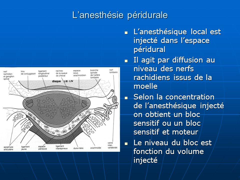 L'anesthésie péridurale L'anesthésique local est injecté dans l'espace péridural L'anesthésique local est injecté dans l'espace péridural Il agit par
