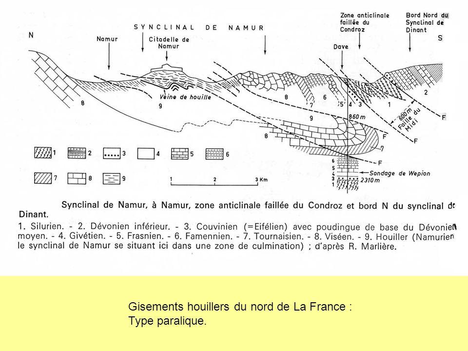 Gisements houillers du nord de La France : Type paralique.