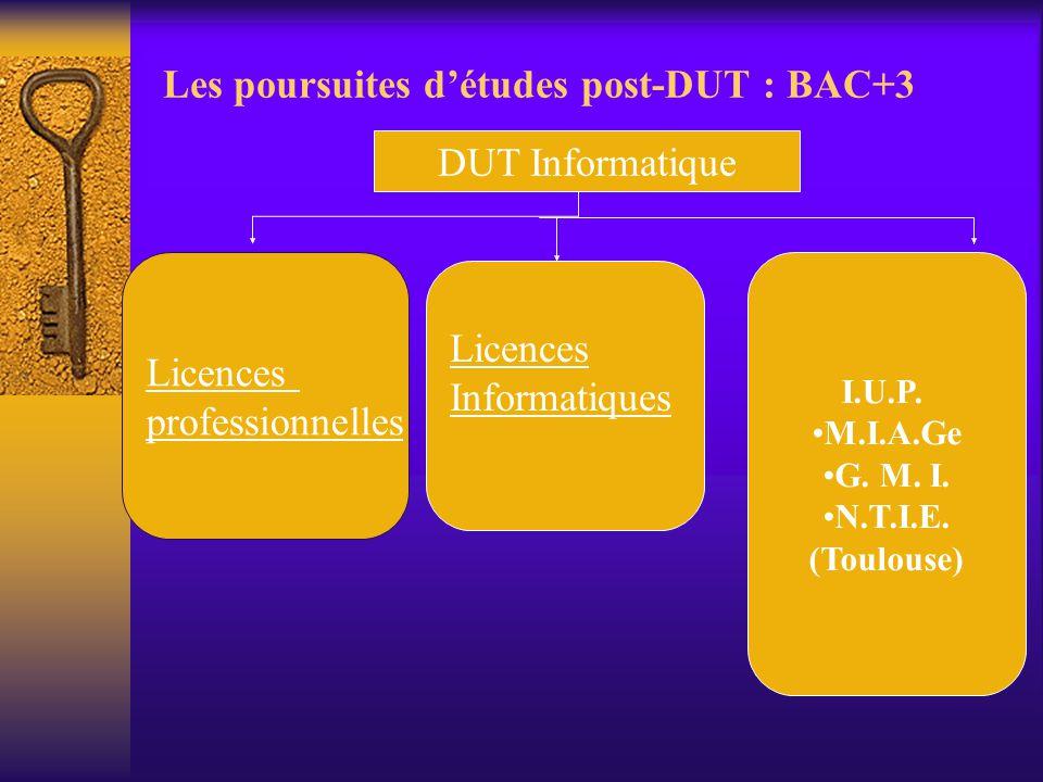 Les poursuites d'études post-DUT : BAC+3 DUT Informatique Licences professionnelles Licences Informatiques I.U.P. M.I.A.Ge G. M. I. N.T.I.E. (Toulouse